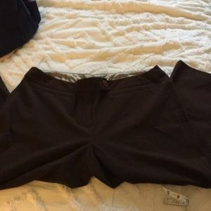 Capri office pants